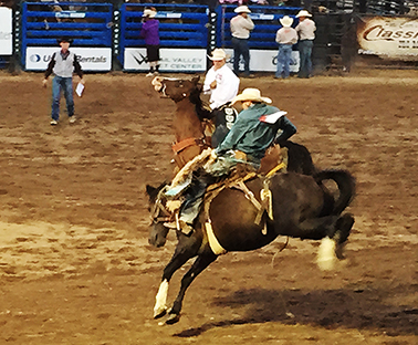 The Eagle County Rodeo, fun for the Whole Family