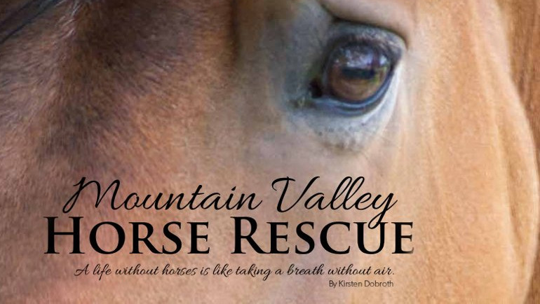 Mountain Valley Horse Rescue