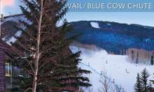 vail_blue_cow_chute_featured