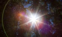 20170316_BC_Sun Burst Flare_Trees_1_JonResnick