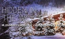 hidden_woods_featured
