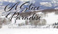 paradise_featured