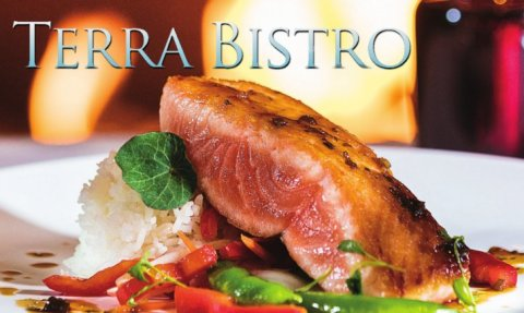 terra_bistro_featured