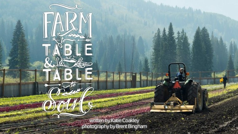 farm_to_table_featured