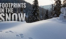 footprints_featured